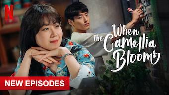 When the Camellia Blooms: Season 1