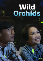 Search netflix Wild Orchids